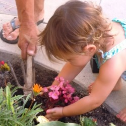 PLANTING FLOWERS WITH DADDY